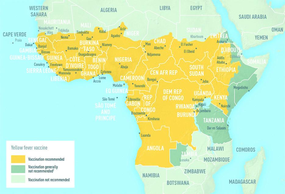 żółta gorączka w Afryce
